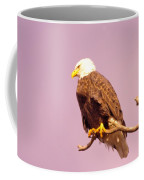 An Eagle Hanging Out Coffee Mug
