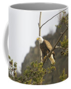 An Eagle In The Spring Coffee Mug
