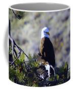 An Eagle In The Sun Coffee Mug