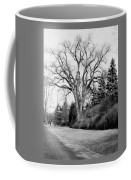 An Elm Tree At The Side Of A Road Coffee Mug