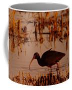 An Ibis Feeding Coffee Mug