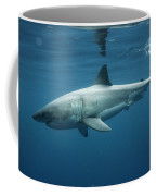 An Underwater Profile View Of A White Coffee Mug
