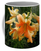 Anaconda Coffee Mug