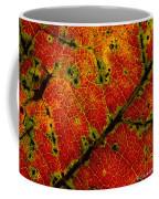 Anatomy Of The Fall... Coffee Mug