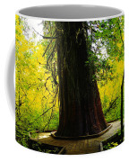 Ancient Old Growth Coffee Mug