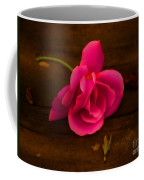And A Girl Dreams Coffee Mug
