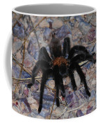 And Along Came A Little Spider .  Coffee Mug