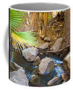 Andreas Creek In Indian Canyons-ca Coffee Mug