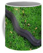 Anerythristic Red Belly Snake Coffee Mug