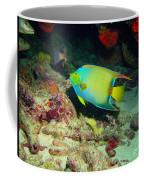 Angel Fish Coffee Mug