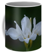 Angel Wings Iris Coffee Mug