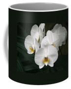 Angelic Delight Coffee Mug