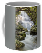 Angels At Benton Waterfall Coffee Mug by Debra and Dave Vanderlaan