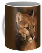 Angle Of Pursuit Coffee Mug