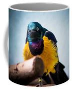 Angry Sunbird Coffee Mug
