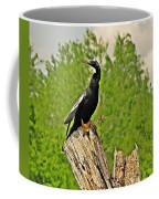 Anhinga Bird On Stump Coffee Mug