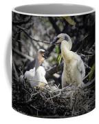 Anhinga Chicks Coffee Mug
