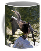 Anhinga Female Coffee Mug
