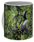 Anhinga Male Coffee Mug