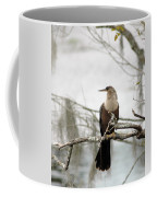 Anhinga On A Misty Morning Coffee Mug