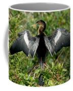 Anhinga Sunning Coffee Mug