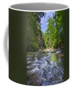 Ankle Deep  Coffee Mug