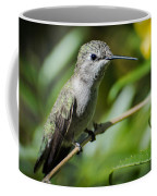 Anna Hummingbird Coffee Mug