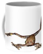 Annam Flying Frog Coffee Mug by Roger Hall
