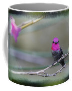 Anna's Hummingbird - Male Coffee Mug