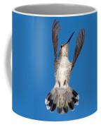 Anna's Hummingbird Tail Display Coffee Mug