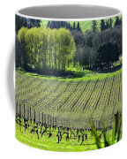 Anne Amie Vineyard Lines 23093 Coffee Mug