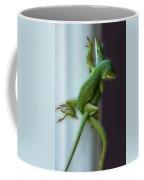 Anole Lovers Coffee Mug