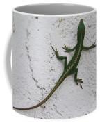 Anole On Stucco Coffee Mug