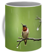 Another Rainy Day Hummingbird Coffee Mug