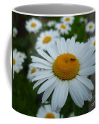 Ant Nothing Sweeter Than My Little Daisy Coffee Mug