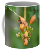 Ant On Plant Coffee Mug
