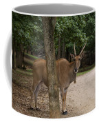 Antelope Behind A Tree Coffee Mug