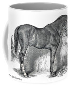 Antique Horse Drawing Coffee Mug