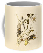 Ants Spiders Tarantula And Hummingbird Coffee Mug by Getty Research Institute