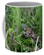 Anura Coffee Mug