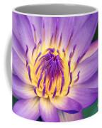 Ao Lani Heavenly Light Coffee Mug