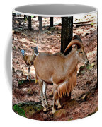 Aoudad Plus 2 Coffee Mug