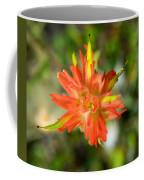 Apex Of Indian Paintbrush Coffee Mug