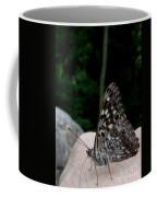 Appalachian Empress Coffee Mug