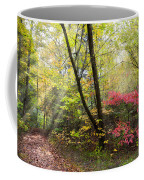 Appalachian Mountain Trail Coffee Mug