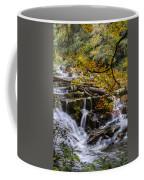 Appalachian Mountain Waterfall Coffee Mug