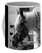 Appaloosa 1 Coffee Mug