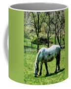 Appaloosa In Pasture Coffee Mug