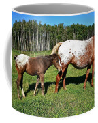 Appaloosa Mamma And Baby Coffee Mug