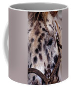 Appaloosa Coffee Mug by Skip Willits